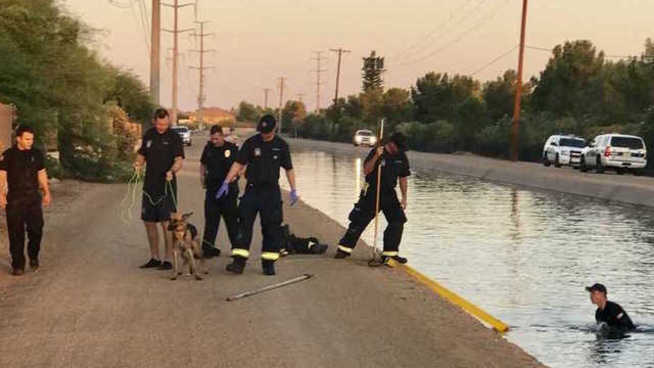 Months-old dog rescued from Phoenix canal after being found by passersby
