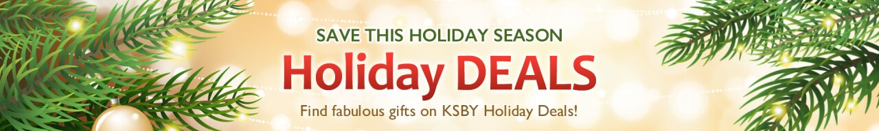 Holiday-Deals-TOP-OF-PAGE.jpg