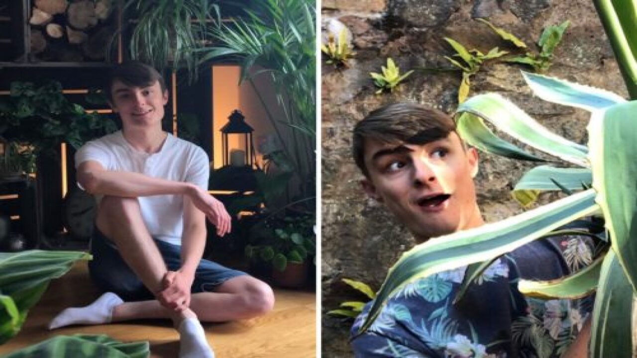 This 20-year-old Garden Center Worker Keeps 400 Houseplants In His 1-bedroom Home