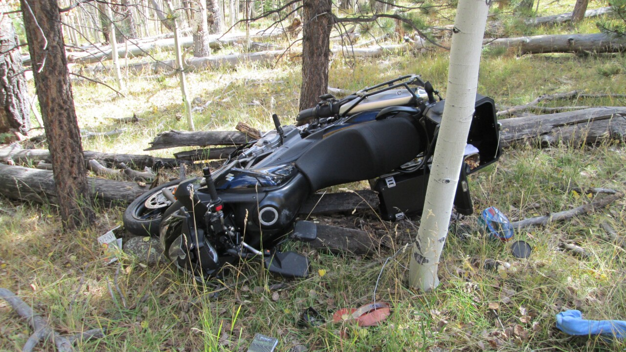 Motorcyclist who died after crashing into falling tree felled by Boy Scouts identified