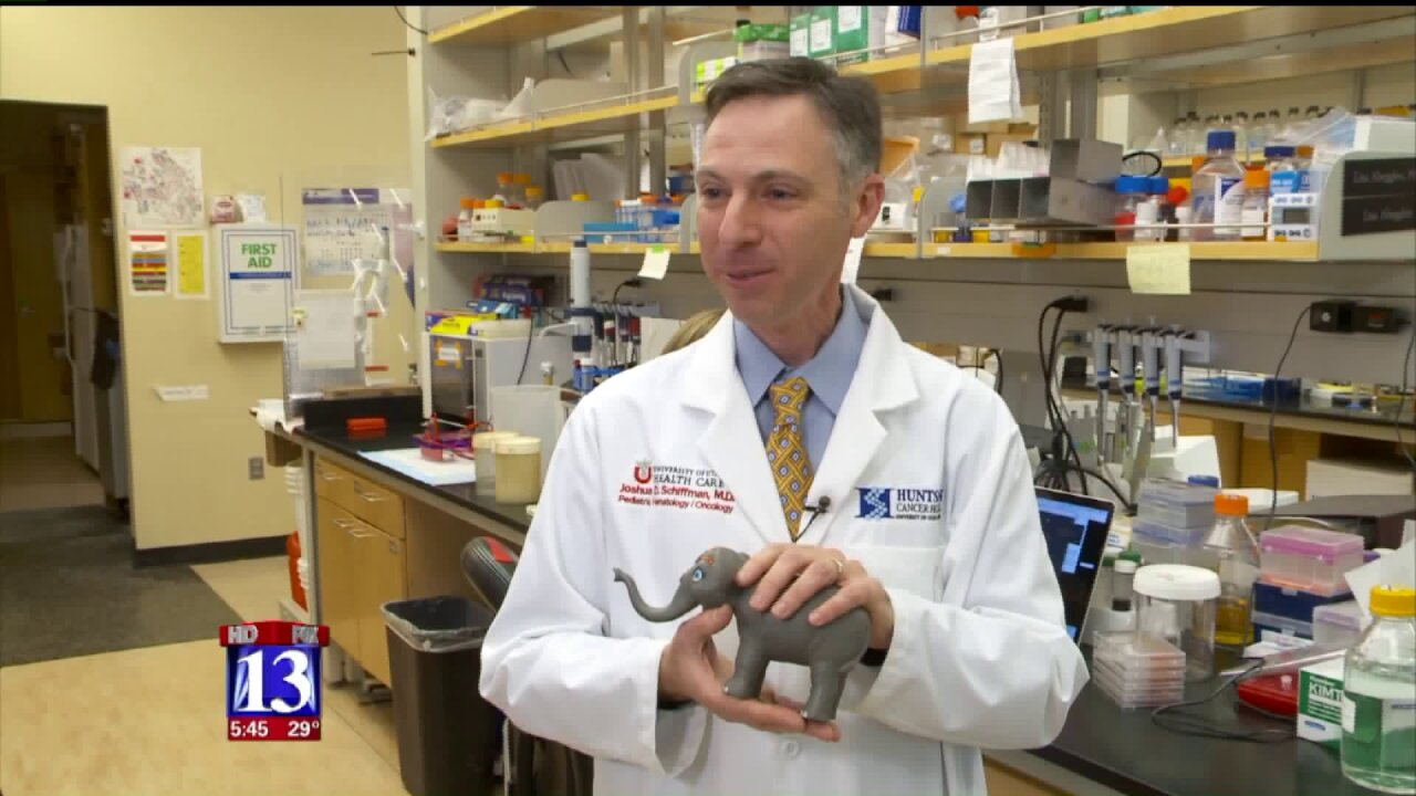 Utah researchers use elephant genes to battle cancer