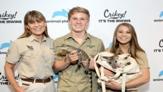 Bindi Irwin, Steve Irwin's Daughter, Is Engaged And Her Ring Is Gorgeous