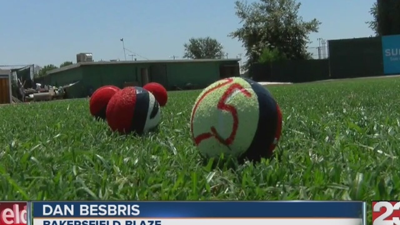 Bakersfield Blaze hosting Pokemon Go event