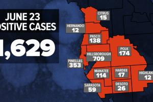 6-23-2020_WFTS_COVID_CASES_BY_COUNTY.png