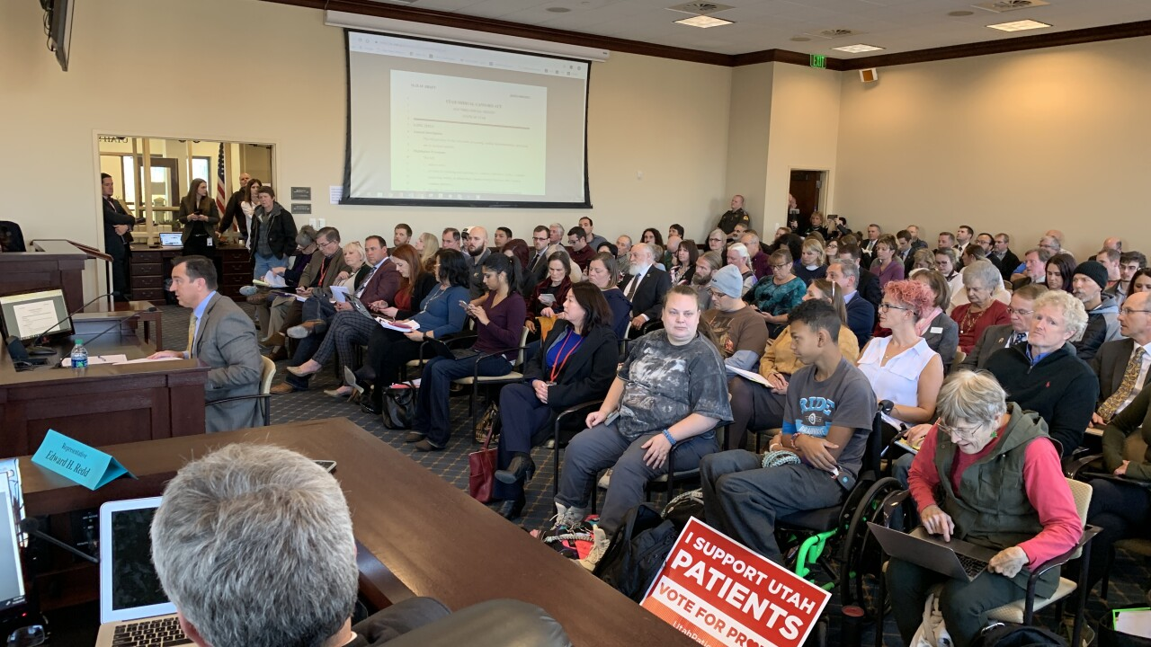 In the final public hearing on Prop. 2 replacement bill, medical cannabis advocates blast 'compromise'