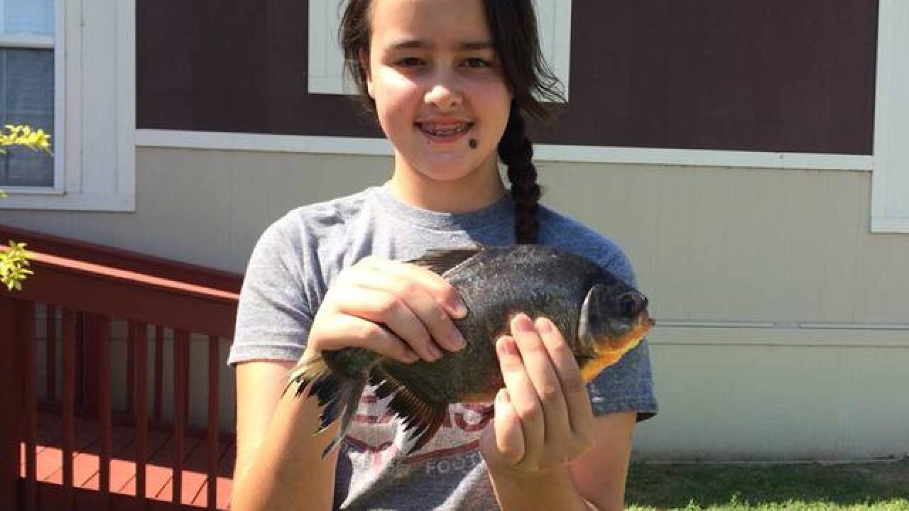 Girl makes surprising catch at Fort Cobb