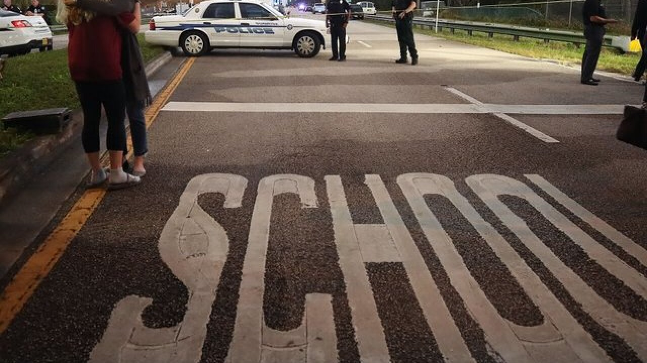 Firms sell school 'hardening' as mass shooting solution