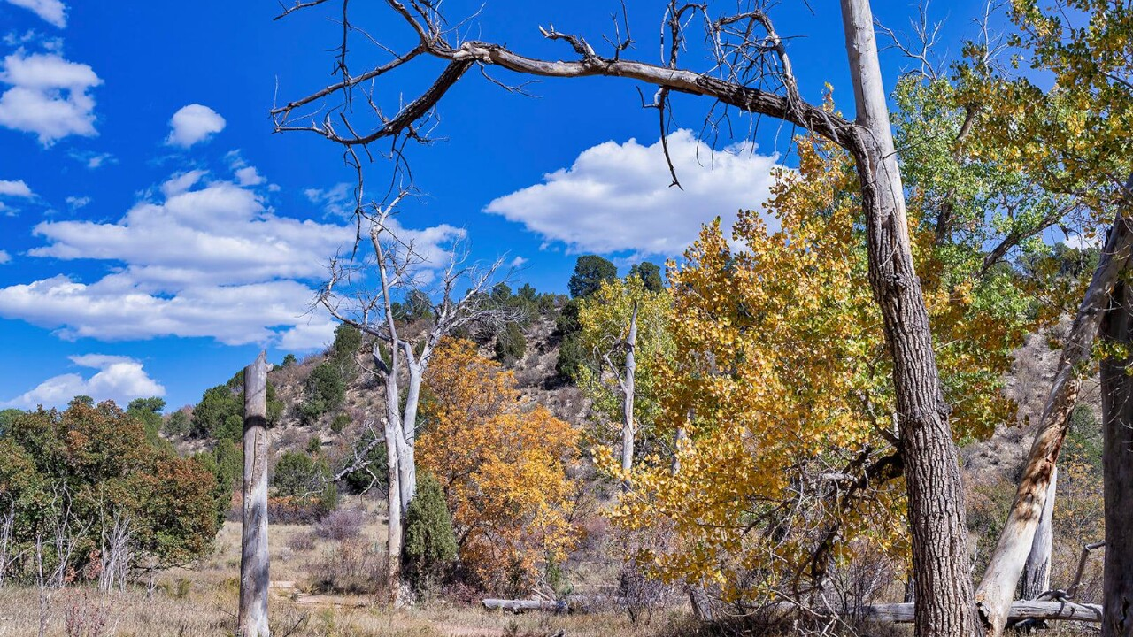 Garden of the Gods Rock Ledge Ranch Larry Marr 2.jpg