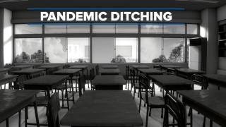Pandemic Ditching