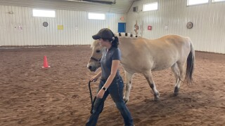Exceptional Equestrians, nonprofit in De Pere