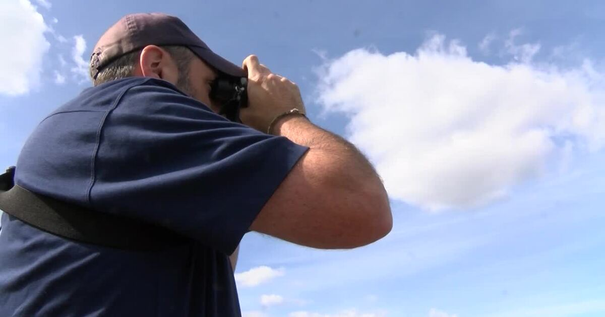 Montana bird lovers react to new study showing loss of 3 billion birds