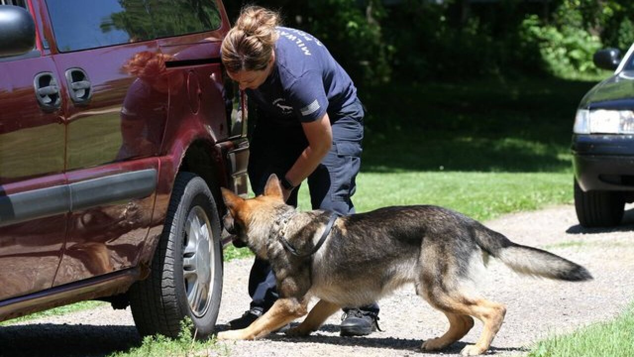 MPD welcomes new K9 officer