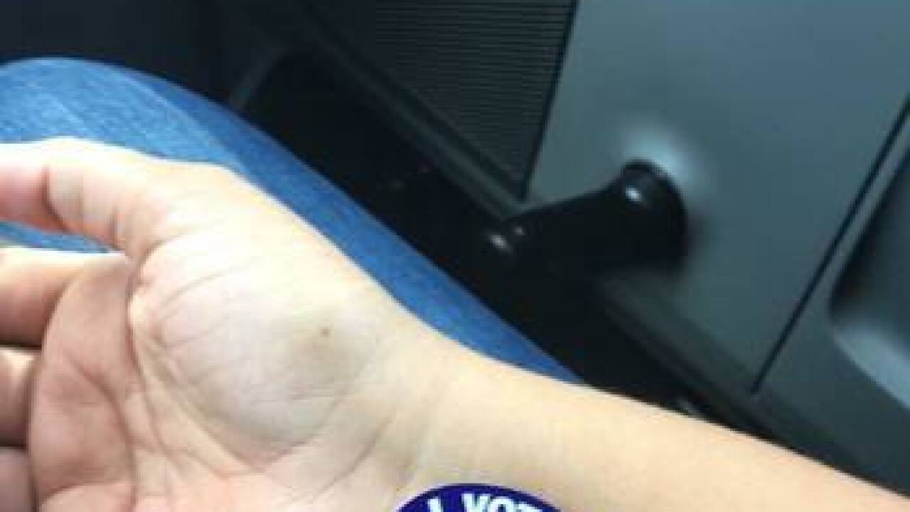 """ELECTION DAY 2016: """"I Voted!"""" Photo Gallery"""