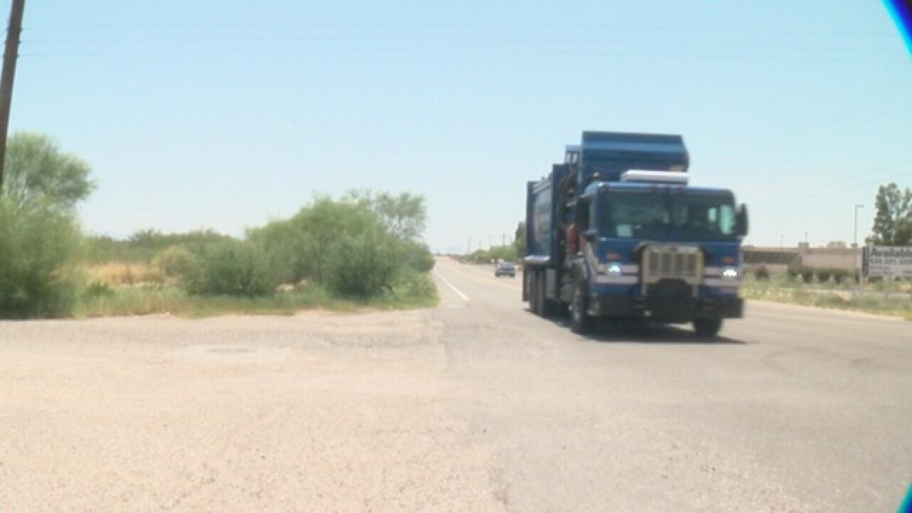 Growing hazard: Plants block drivers' view