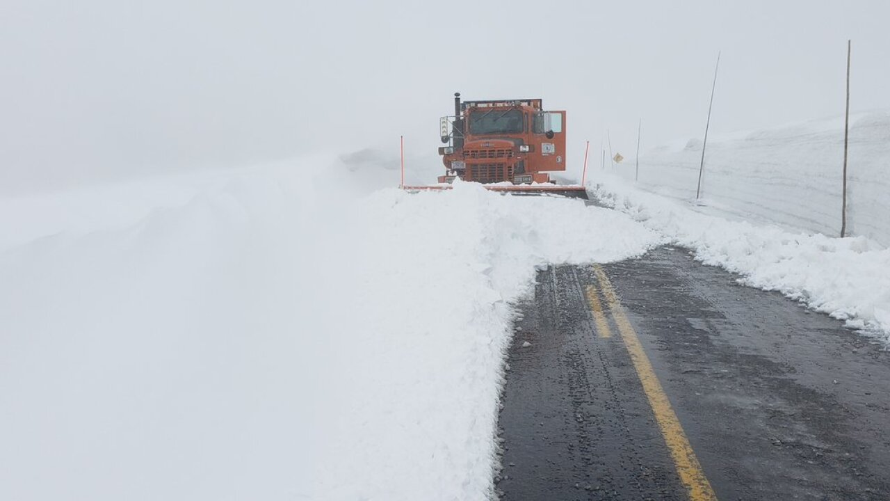 trail ridge road snow june 2019