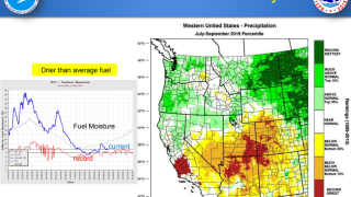 Near Record Low Fuel Moisture.png