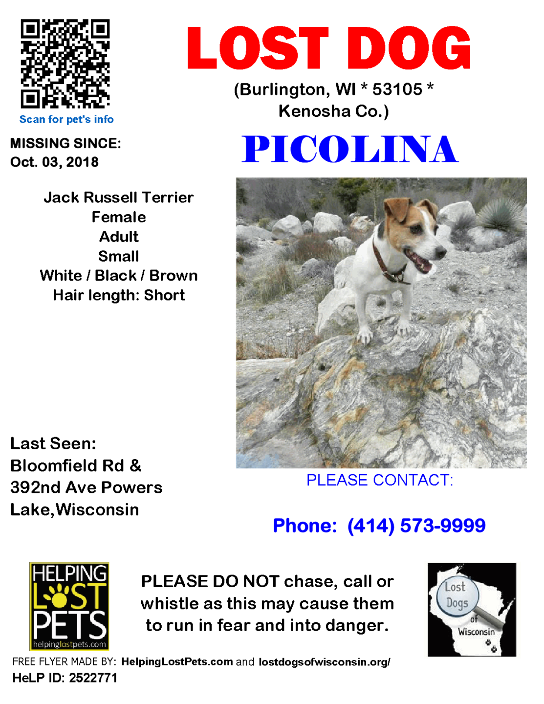 1003 Picolina Jack Russell Adult.png