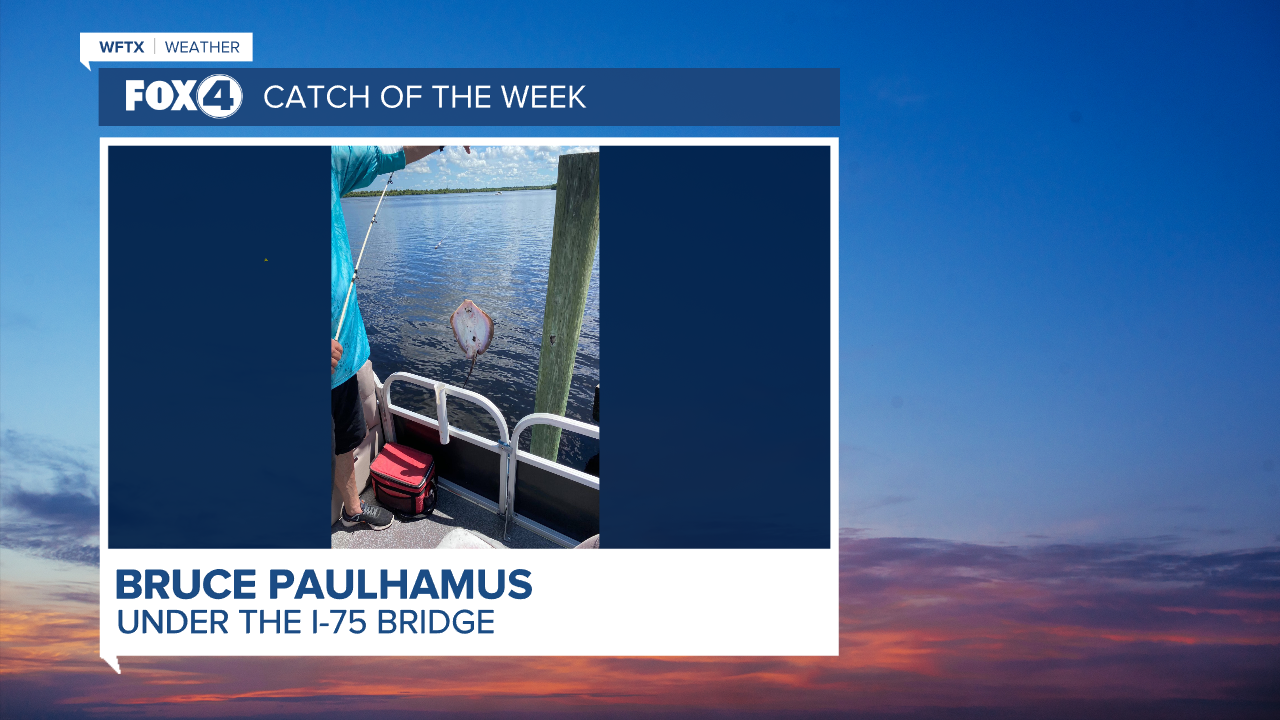 Catch of the Week - Bruce Paulhamas