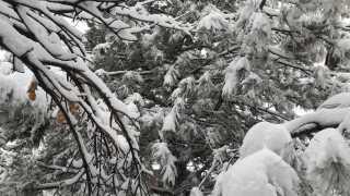 snow denver denver snow capitol hill cap hill snow