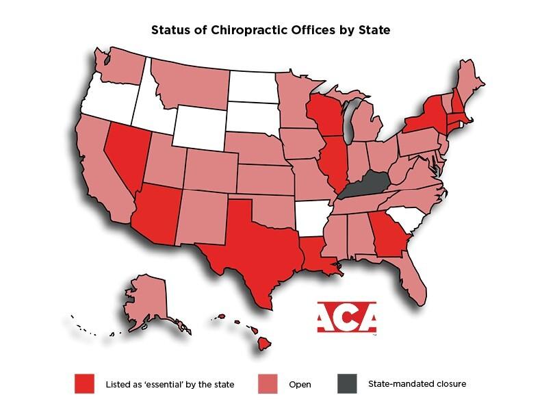 Chiropractor chart.jpg