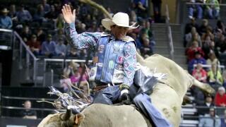 Concussions Bull Riding