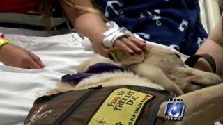 Pet Therapy: Paws Up Helping Patients At Driscoll Children's Hospital