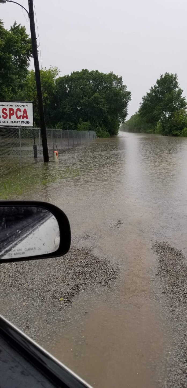 SPCA flooding May 21 2019.JPG