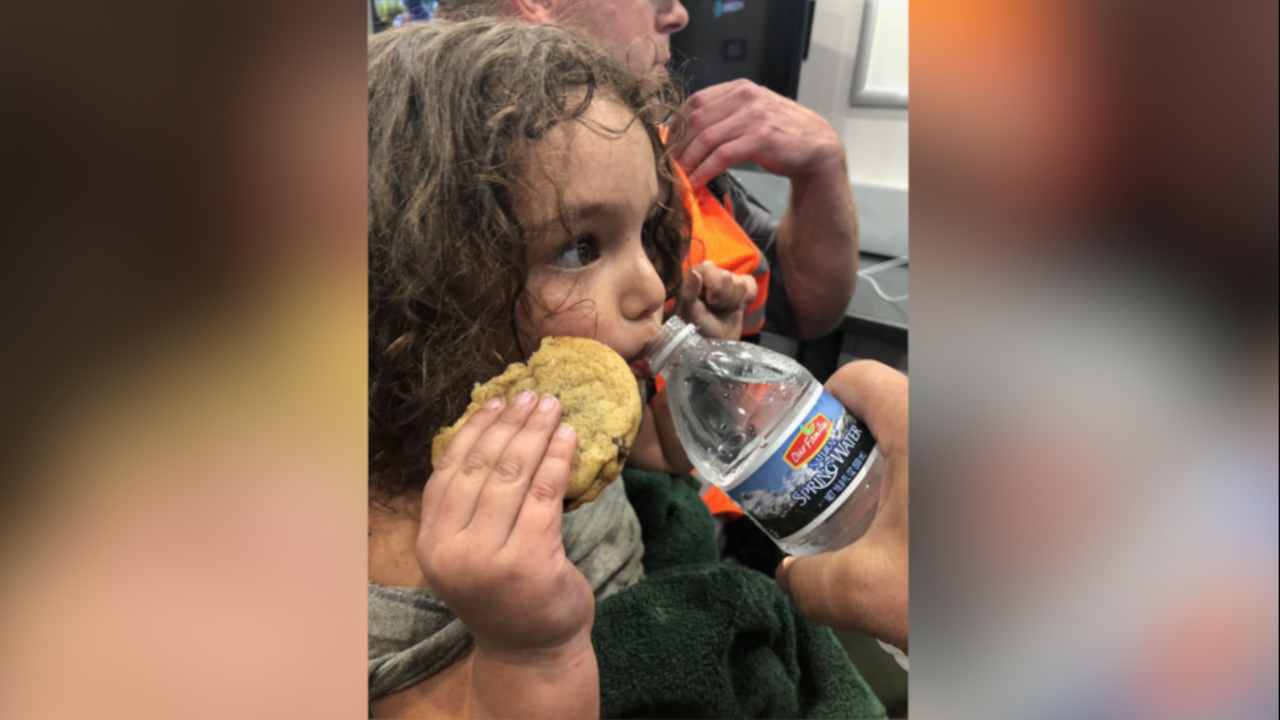 2-year-old girl missing in northern Michigan found alive