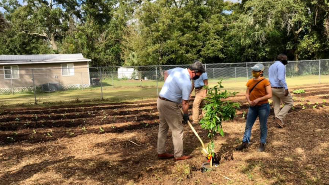 City Farm TLH breaks ground in Tallahassee's Greater Bond community.PNG