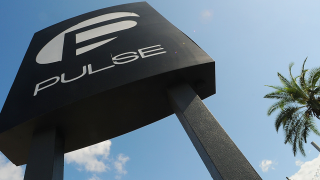 pulse-nightclub-sign-palm-tree.png