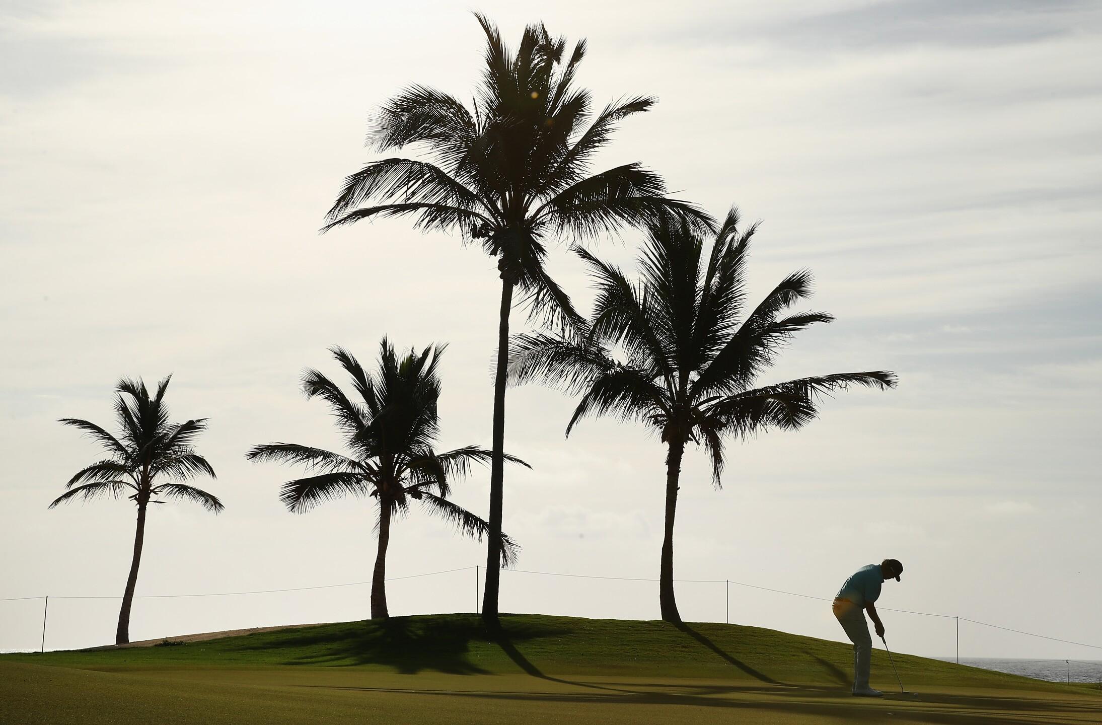 Golfer in Punta Cana, Mexico