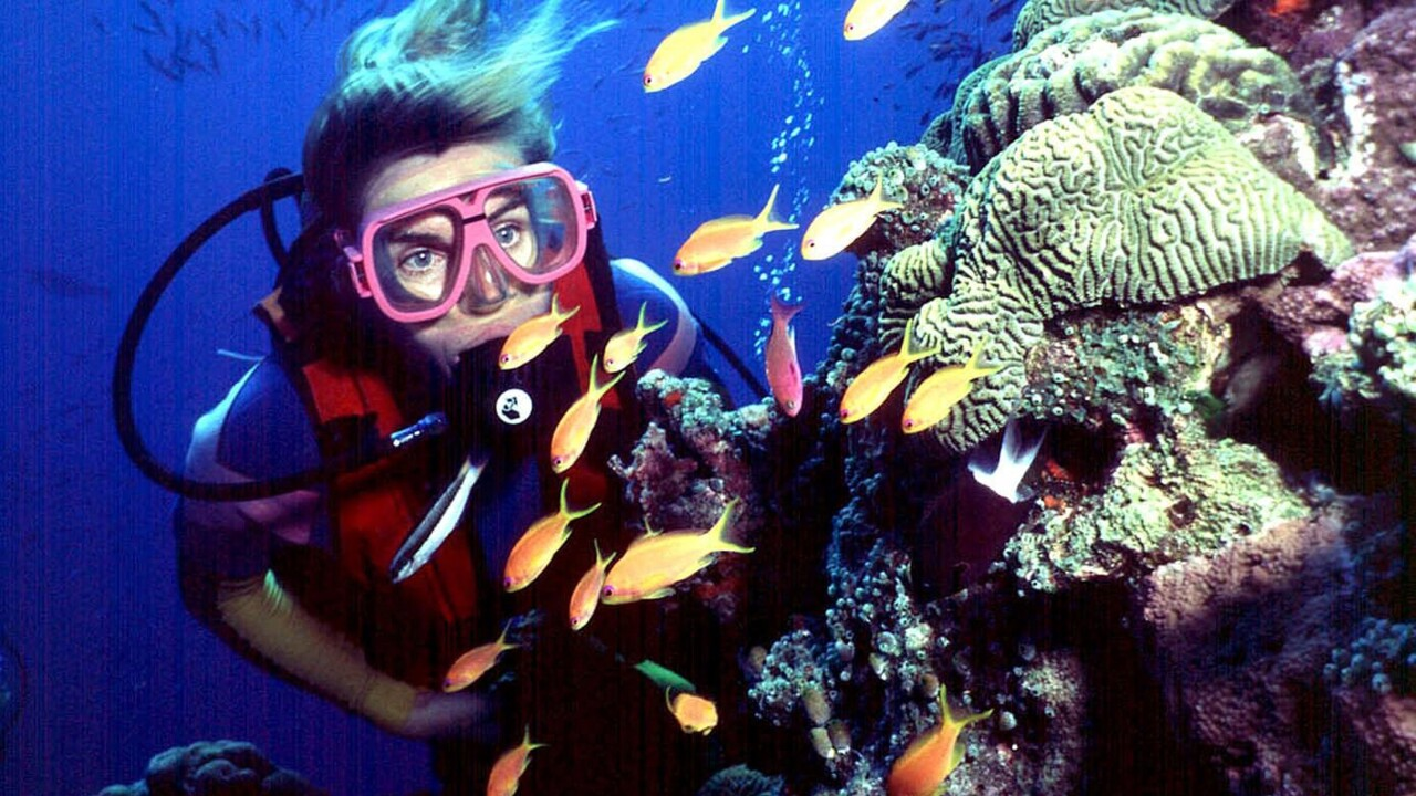 Australia Bleached  Reef