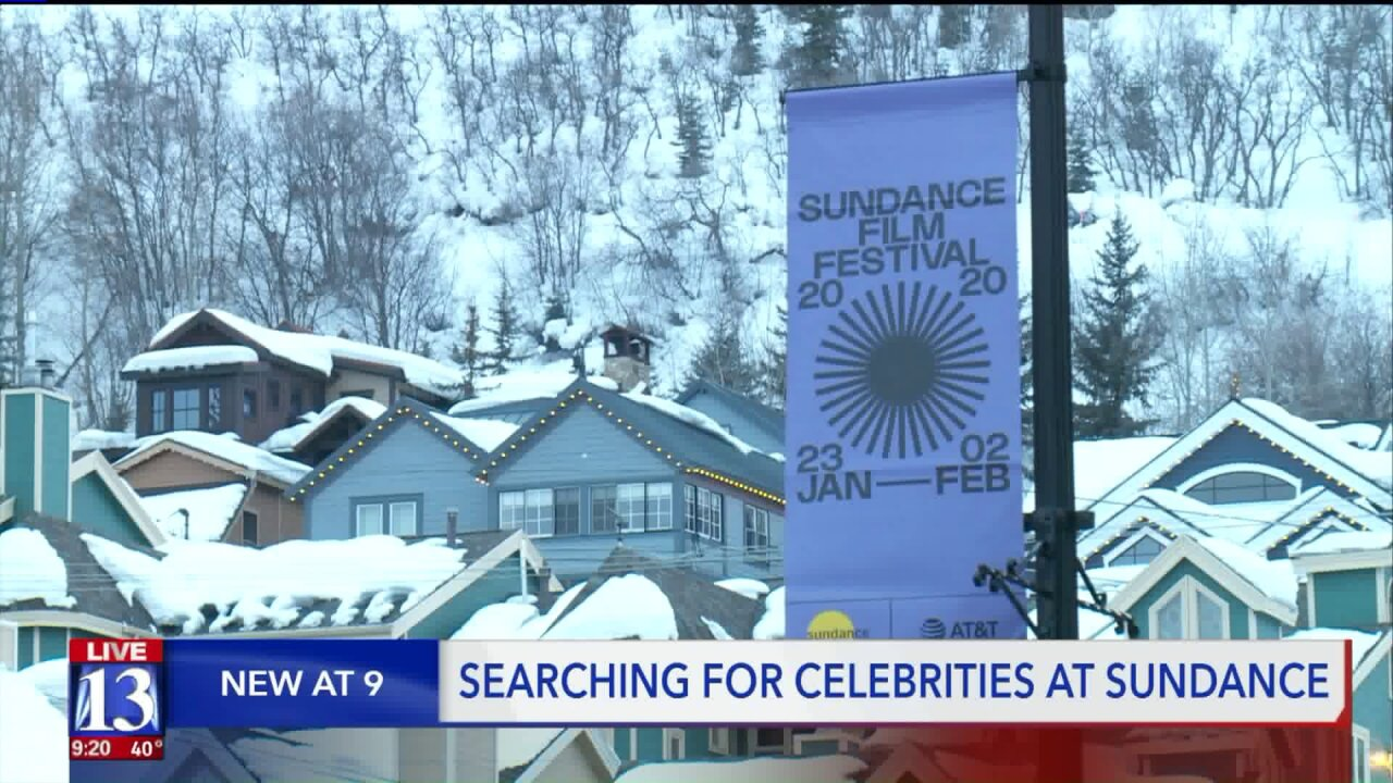 Some go to Sundance for the movies, others go for the stars