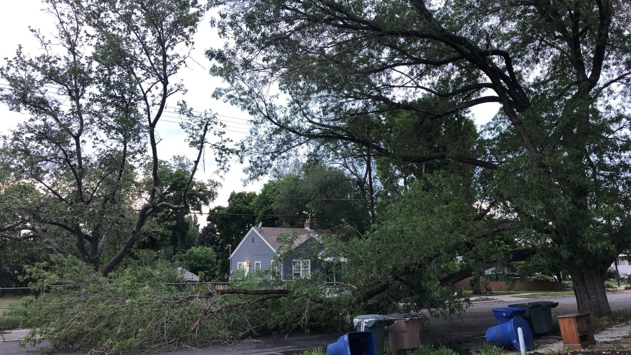 Fallen tree removed from 400 East in Salt Lake City; more storms expected in Utah thisweekend