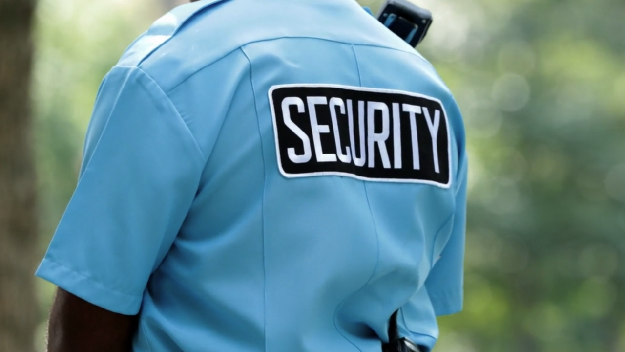 More people using private security at rates never seen before
