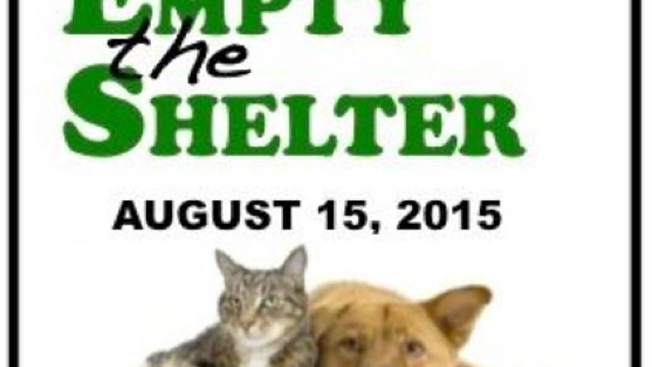 Pet preview: Empty the Shelter Day Aug. 15