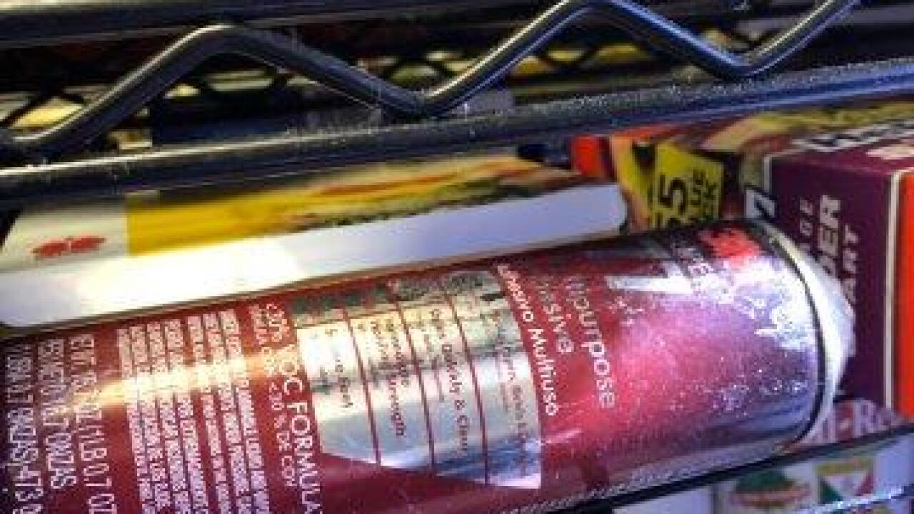 PR0128072 Cafe No Fur C downgrade 916 (34).jpg