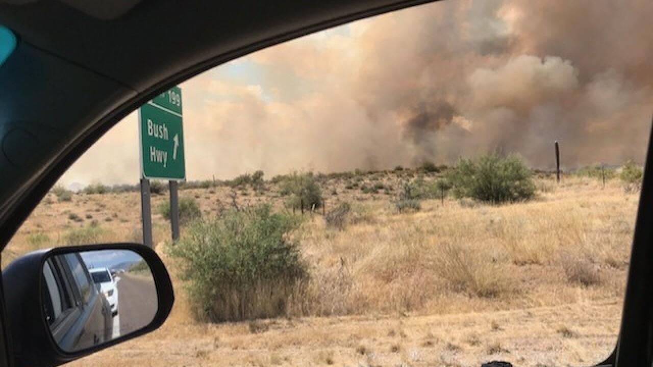 bush-fire