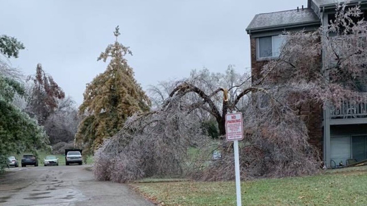Who pays when a tree falls during a storm?