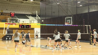 towson volleyball
