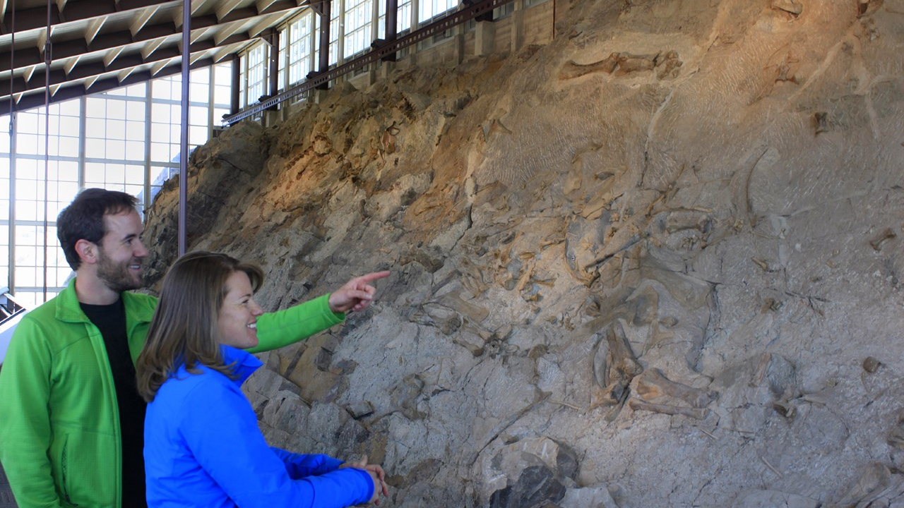 Image of the Dinosaur Quarry Exhibit, which shows fossilized dinosaurs embedded in rock. Courtesy of the National Park Service.
