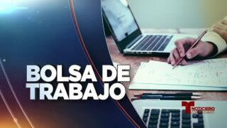 Bolsa de trabajo: 29 de enero, 2019