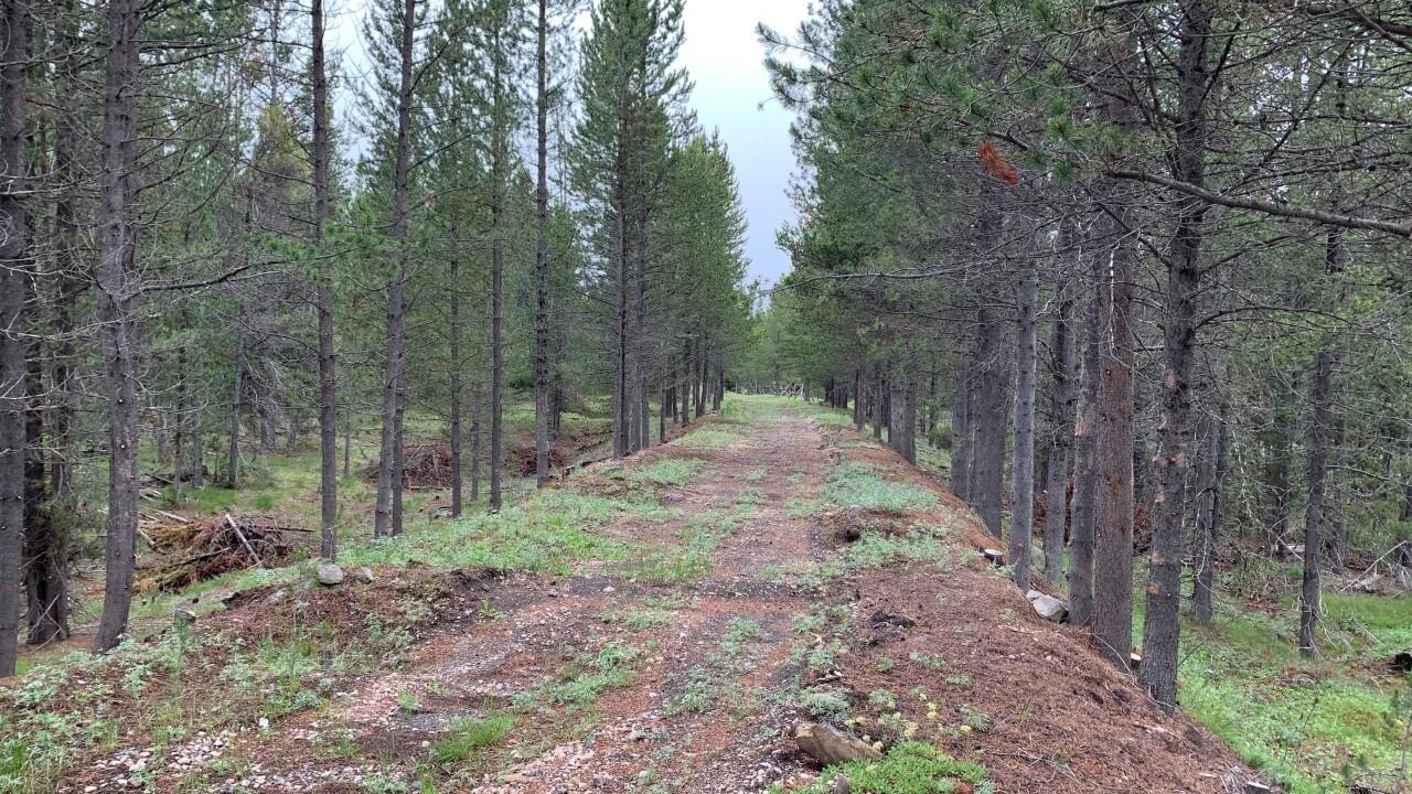 Yellowstone Shortline Trail