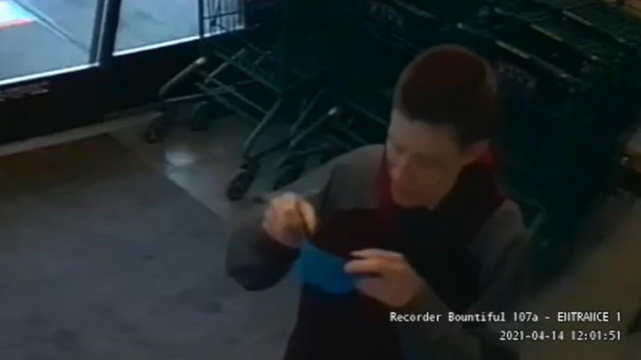 Bountiful Theft Suspect, April 2021