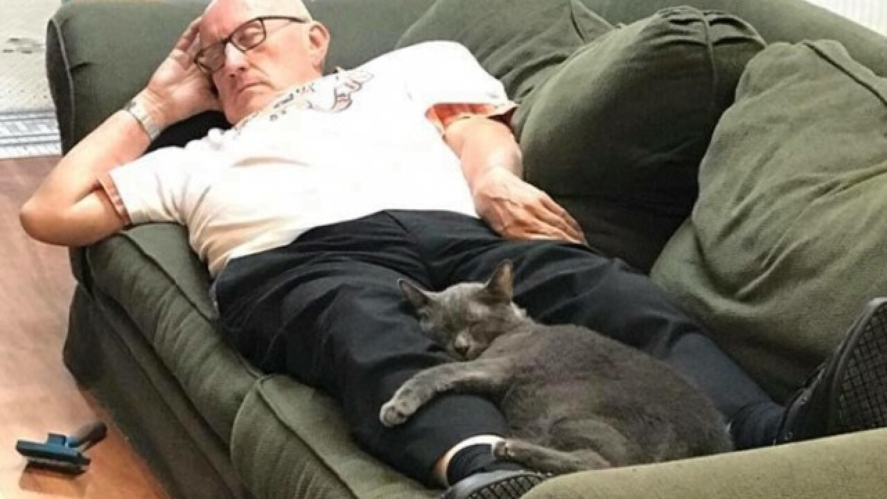 Pet Haven Sanctuary volunteer naps with cats