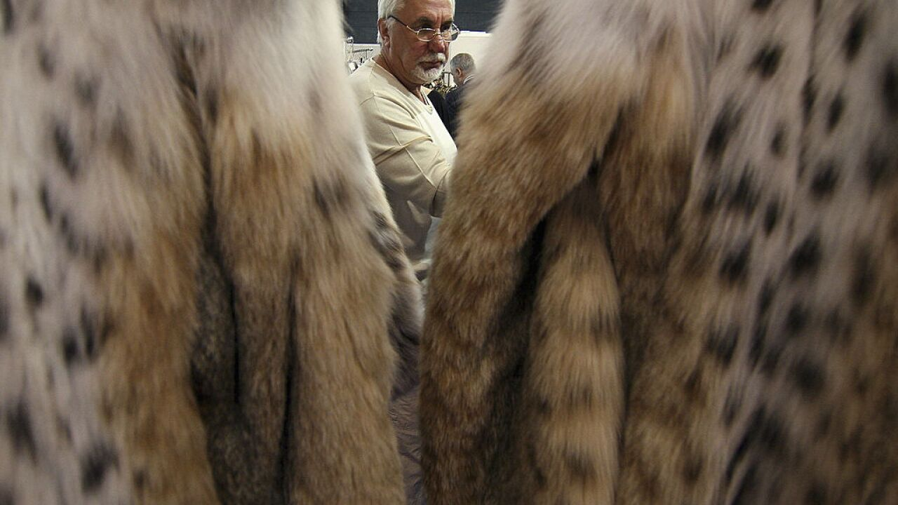 New proposal could ban the sale of fur in New York State