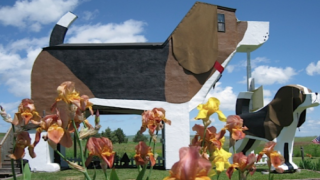 This Pet-friendly Airbnb Is Shaped Like A Giant Beagle