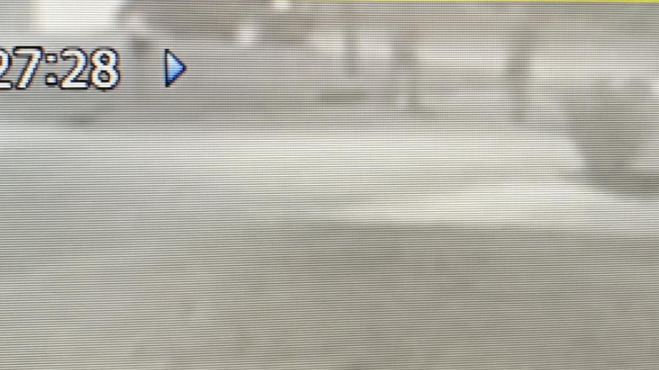 Screen Shot 2020-11-17 at 4.01.20 PM.png