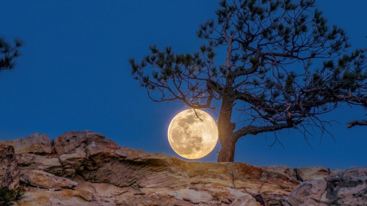 Daniel Forster full moon Colorado Springs