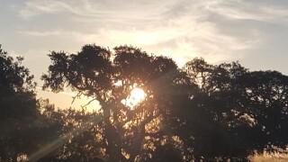 Morning Paso Robles Skies